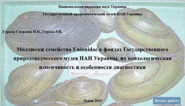 Моллюски семейства Unionidae в фондах Государственного природоведческого музея НАН Украины