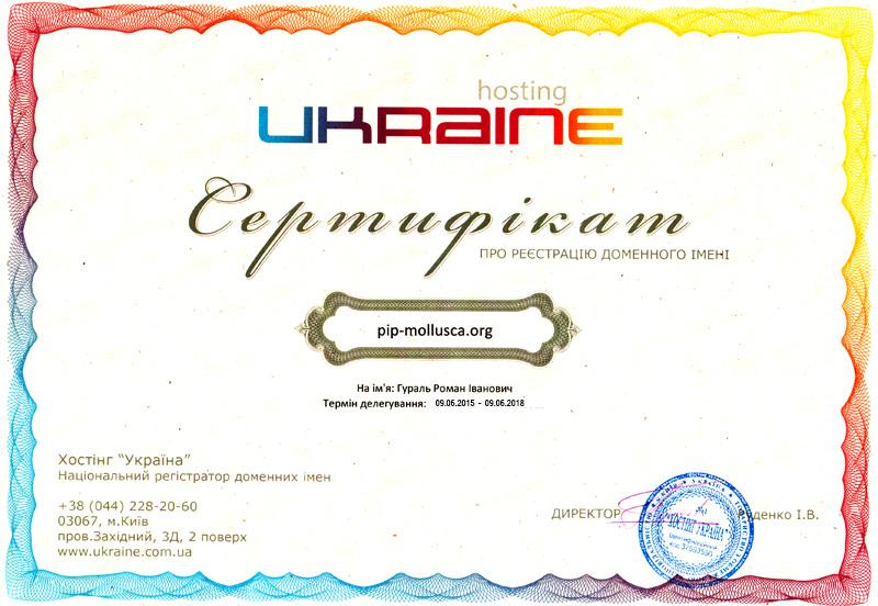 Сертифікат на домен