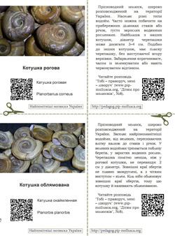 Серія карток 'Найпомітніші молюски України'. Картка №5