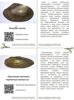 Серія карток 'Найпомітніші молюски України'. Картка №6