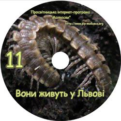 Диск 'Вони живуть у Львові'. Приклад оформлення диску №11