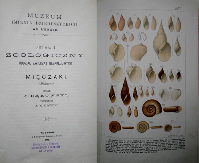 Скан с каталога Й.Бонковского