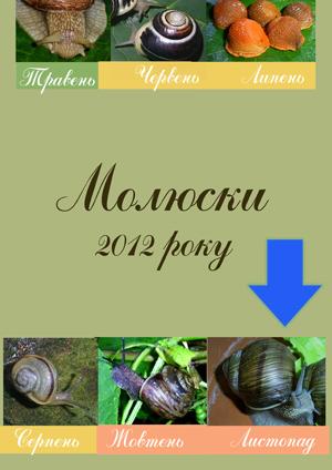 Рейтинг молюсків 2013 р.