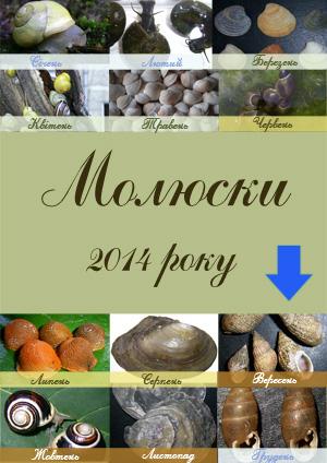 Рейтинг молюсків 2014 р.