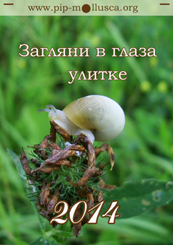 Титульна сторінка календаря на 2014 р. - 'Загляни в глаза улитке'