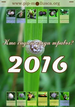 """Титульная страница календарья на 2016 г. - """"Кто сидит среди травы?"""""""