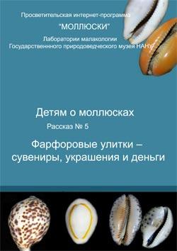 Расказ для детей 'Фарфоровые улитки – сувениры, украшения и деньги'