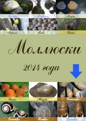 Рейтинг моллюсков 2012 г.